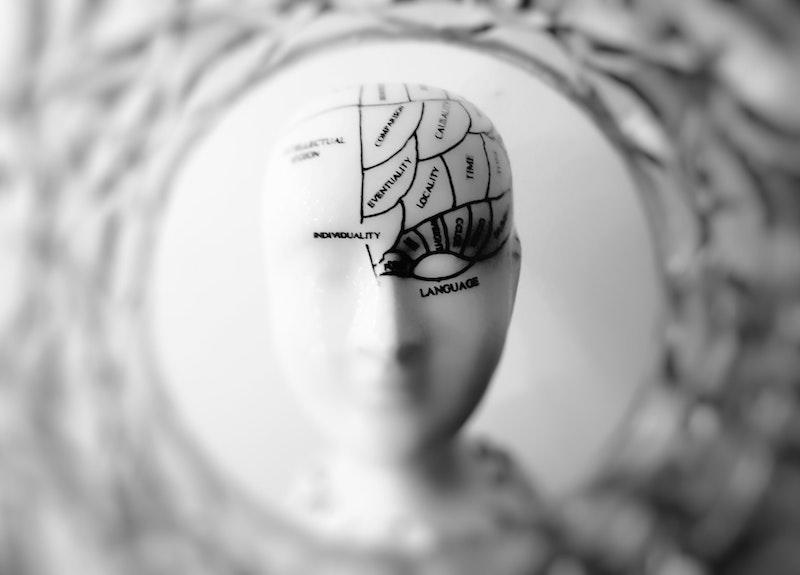 情報を整理する脳